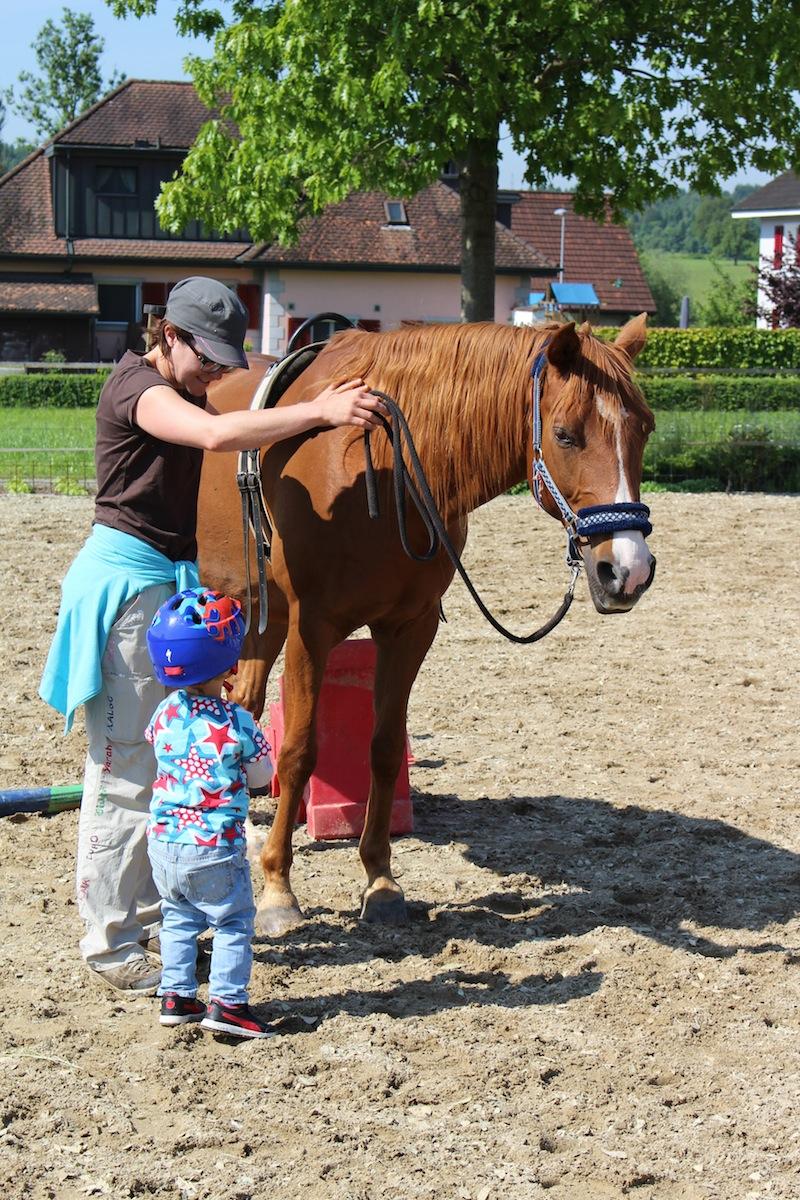 Kind Vetrauen Pferd
