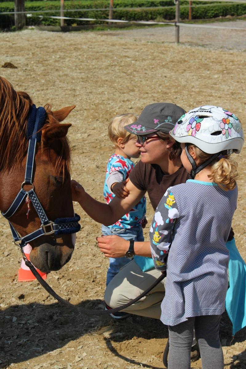 Bodenarbeit Pferd Kind