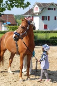 Kind Führung Pferd