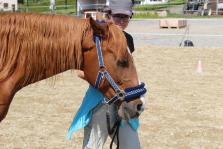 entspannte Beziehung Pferd Mensch