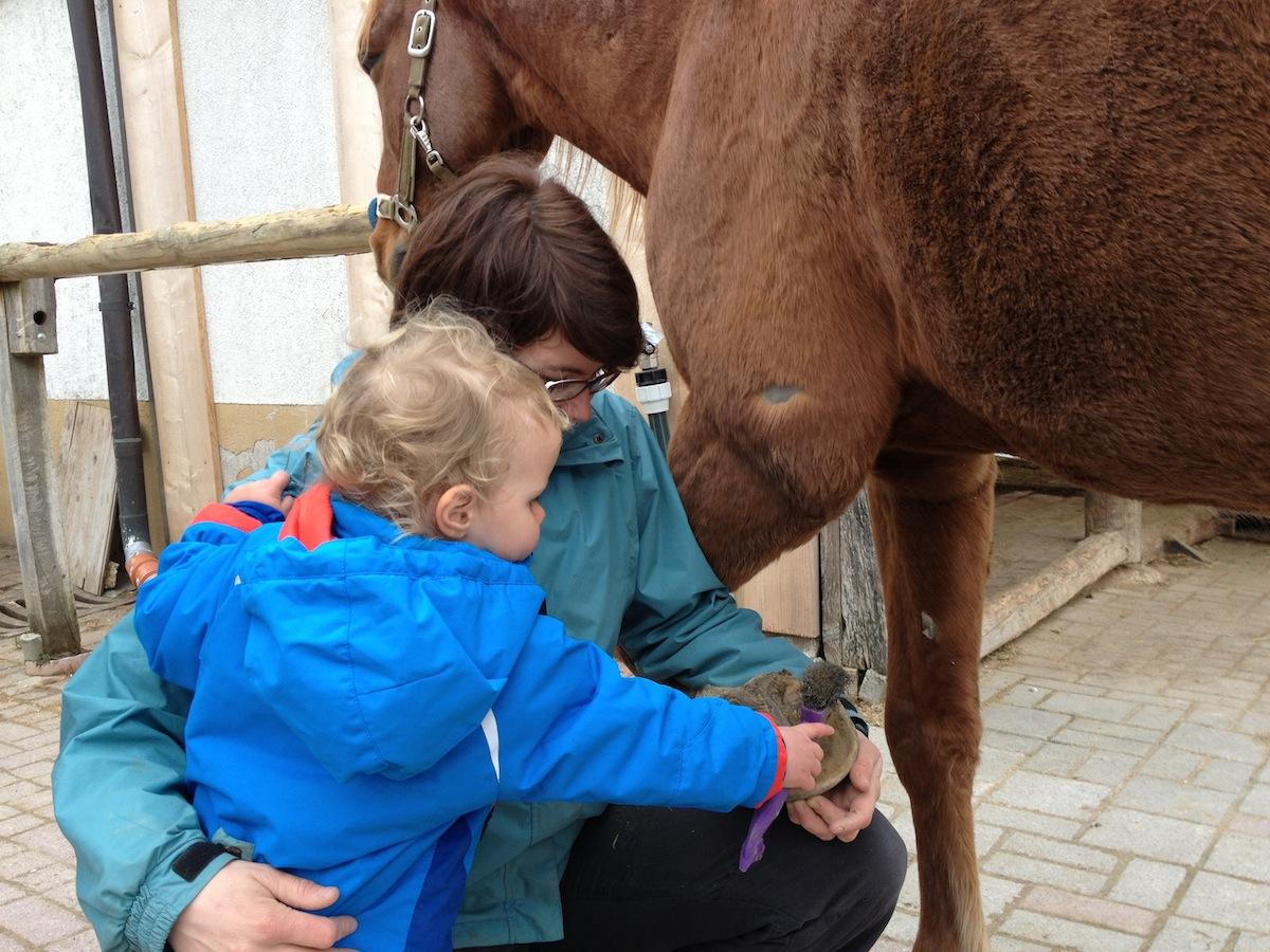 Pferdepflege Kind Vertrauen