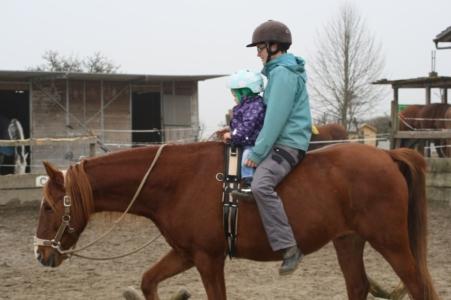 Vertrauen Kind Pferd